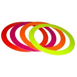 anneau bicolor