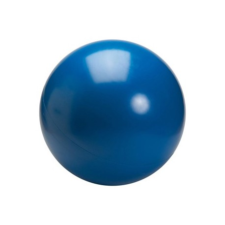 boule d equilibre 70 cm 10 kg