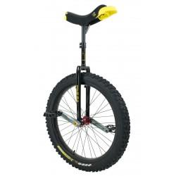 monocycle muni 24 pouces